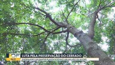 Engenheiro da Emater alcança marco de um milhão de mudas plantadas - O trabalho ajuda na recuperação das áreas degradadas do nosso Cerrado.