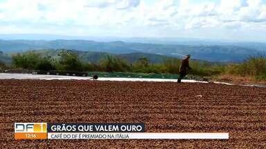 Grãos que valem ouro - Café produzido aqui no DF é consumido e premiado na Itália.