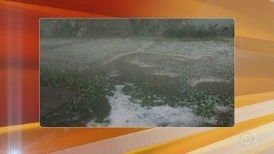 Chegada de frente fria provoca chuva de granizo em Piedade - O tempo mudou no fim da tarde de terça-feira (31) e voltou a chover na região. A chegada de uma frente fria provocou chuva de granizo em Piedade (SP).