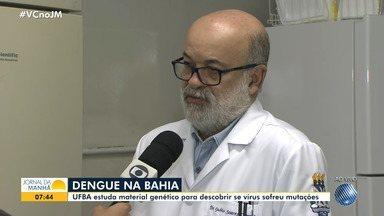 Dengue: UFBA estuda material genético para descobrir se o vírus sofreu mutações - Veja também os número de casos da doença nas cidades de Juazeiro, Feira de Santana, Luís Eduardo Magalhães e em Itabuna.