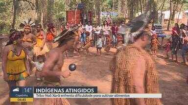 Tribo que mora às margens do Paraopeba recebeu doação de 800 litros de leite - Os índios foram afetados pelo rompimento da barragem em Brumadinho.