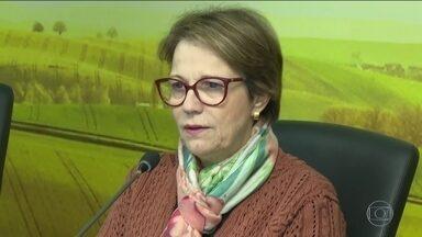 Ministra da Agricultura defende mais agrotóxicos e tranquiliza consumidor - Segundo Tereza Cristina, os produtos aprovados são mais modernos. Ela afirmou que o governo observa todas as normas, estudos e referências internacionais.