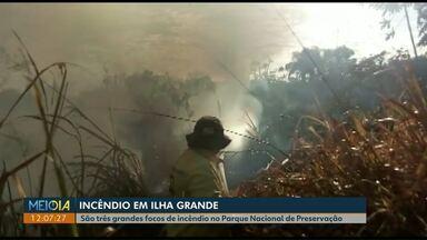 Incêndio em Ilha Grande já dura seis dias - São três grandes focos de incêndio no Parque Nacional de Preservação, em Altônia.