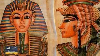 Terra da Gente: planta era segredo de beleza de Cleópatra - Terra da Gente: planta era segredo de beleza de Cleópatra