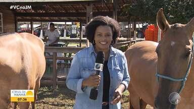JM no Campo: Salvador recebe a Exporural até o próximo final de semana - Veja as principais notícias do agronegócio baiano com Georgina Maynart.