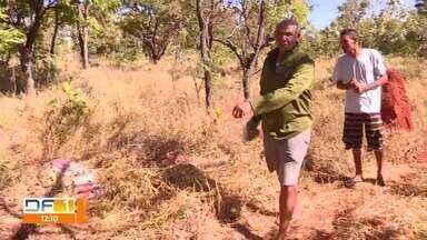 Mulher é encontrada seminua e ferida na Asa Norte - Uma mulher de 42 anos foi encontrada ferida e sem as roupas de baixo num matagal na Asa Norte, hoje de manhã.