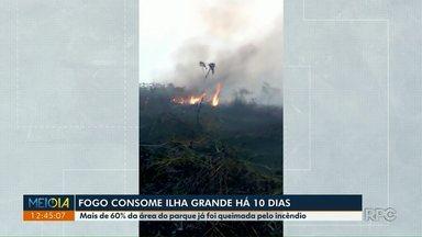 Fogo consome Ilha Grande há 10 dias - Mais de 60% da área do parque já foi queimada pelo incêndio.