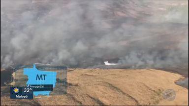 MT atinge nível crítico de queimadas - MT atinge nível crítico de queimadas