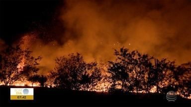 Fogo atinge vegetação de campus de universidade em Presidente Prudente - Bombeiros levaram cerca de 3 horas para conter as chamas.