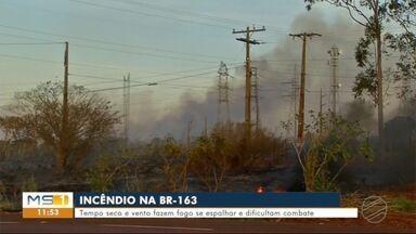 Tempo seco e vento fazem o fogo se espalhar no incêndio na BR-163 em Dourados - Isso tem dificultado o combate as chamas.