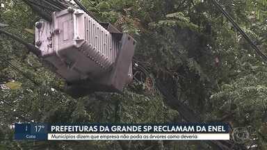 Prefeituras reclamam da Enel por falta de poda próximo à rede elétrica - Nove prefeituras da Grande São Paulo estão reclamando da Enel, distribuidora de energia. A empresa, segundo os municípios, não está podando as árvores que estão próximas à rede elétrica como deveria.