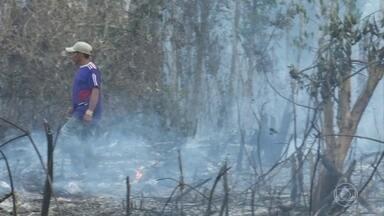 Governo do Acre decreta estado de emergência devido à estiagem e queimadas - Documento é publicado uma semana depois do decreto de alerta.