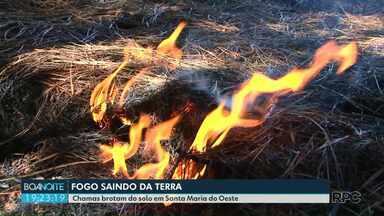 Chamas brotam do solo em Santa Maria do Oeste - As chamas estão queimando uma área de reflorestamento.