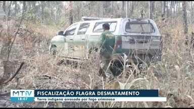 Fiscalização encontra queimada e desmate em reserva indígena em Nova Nazaré - Fiscalização encontra queimada e desmate em reserva indígena em Nova Nazaré.