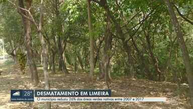 Em 10 anos, área coberta por floresta em Limeira reduziu 26% - Desmatamento preocupa cidades da região de Campinas (SP) e Piracicaba (SP).