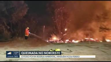 Queimada atinge reserva ambiental no Noroeste - O fogo foi ontem (29), por volta das 19h, em frente à quadra 309. Segundo os bombeiros, a área atingida foi de 8.000 m2.