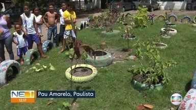 Moradores se unem para para livrar do lixo o local onde residem em Paulista - Iniciativa de moradores transformou localidade de Pau Amarelo.