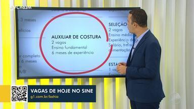 Confira as vagas de trabalho disponíveis no Sine Bahia nesta segunda-feira - Há oportunidades para costureira, motorista carreteiro, entre outras.