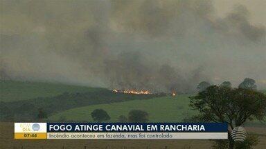 Incêndio em canavial, em Rancharia, é controlado - Chamas atingiram área de uma fazenda.