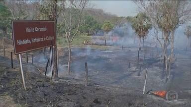Mato Grosso do Sul decreta situação de emergência por causa de queimadas - A situação mais crítica é em Corumbá com mais registros de focos de calor em setembro. Segundo o Instituto Nacional de Pesquisas Espaciais, são 633 registros.