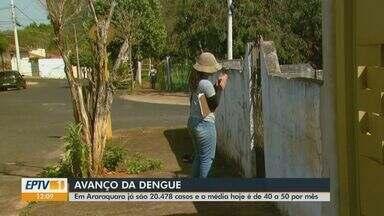 Araraquara ainda registra de 40 a 50 novos casos de dengue por mês - Cidade vive epidemia da doença com mais de 20,4 mil casos neste ano.