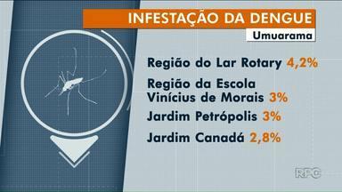 LIRA cai em Umuarama - Mas ainda tem bairros com alta infestação do mosquito.