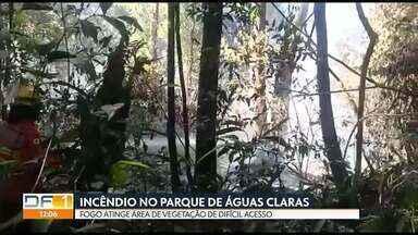 Bombeiros combatem incêndio no Parque de Águas Claras - Fogo começou na noite passada em área de vegetação de difícil acesso. Parque já era monitorado por causa de outro incêndio que atingiu uma área de 38 mil m².