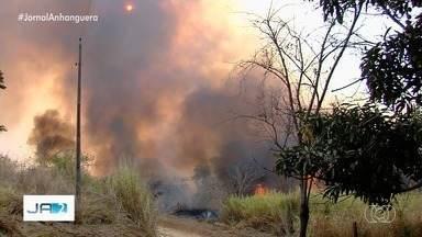 Bombeiros combatem fogo no Parque Altamiro de Moura Pacheco - Trabalho já dura quase 10h e fogo está perto da rodovia.