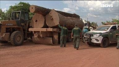 Amazônia e o desmatamento – 3 º episódio