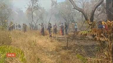 Polícia investiga incêndio em área de proteção ambiental no PA - Bombeiros combatem as chamas há três dias. Metade da floresta já foi destruída pelo fogo, segundo a corporação.