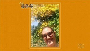 Telespectadores enviam fotos para o quadro 'Tô no BDG' - Imagens podem ser encaminhadas por Whatsapp e redes sociais.