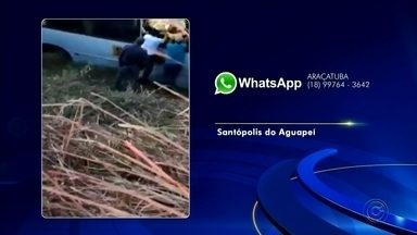 Ônibus com trabalhadores rurais cai em ribanceira de estrada vicinal; uma pessoa morreu - Um ônibus que transportava trabalhadores rurais de uma usina de açúcar caiu em uma ribanceira na manhã desta terça-feira (17) em uma estrada vicinal em Santópolis do Aguapeí (SP). Um homem morreu e 22 pessoas ficaram feridas.
