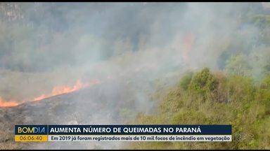 Bombeiros levam a tarde toda para combater incêndio em Rio Branco do Sul - Foram registrados mais de 10 mil incêndios no Paraná do começo do ano até agora.
