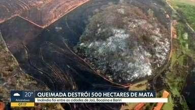 Queimada destrói 500 hectares de mata na região de Jaú - E um levantamento mostra que a cidade de Barretos foi a mais atingida por queimadas no estado nesse ano.