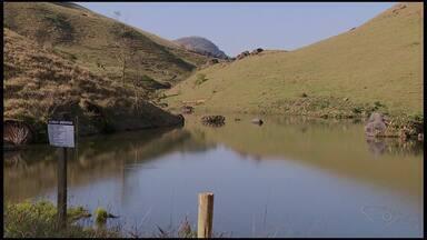 Produtores de Castelo, ES, estão com a produção acima da média mesmo com a falta de chuvas - Agricultores fizeram reserva de água e conseguiram uma boa produção.