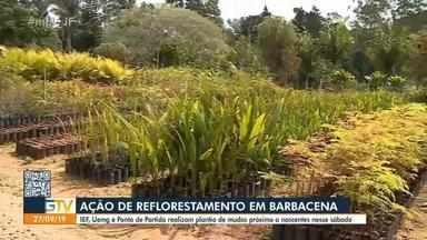 Ação conjunta vai promover o plantio de cinco mil mudas de árvores em Barbacena - A iniciativa acontece através de uma parceria entre o Instituto Estadual de Florestas, a UEMH e o Grupo Ponto de Partida.