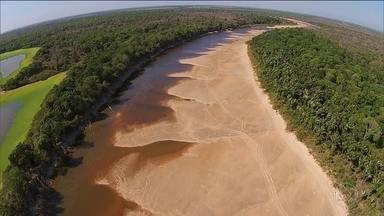 No Tocantins, a seca severa transforma rios em lagos - São mais de 150 dias sem chover na Ilha do Bananal e, na foz do Rio Javaés, a situação é mais crítica.