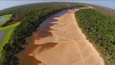 Seca severa transforma rios em lagos no Tocantins - Maior ilha fluvial do mundo sofre com estiagem.
