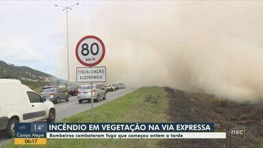 Bombeiros combatem fogo em vegetação na Via Expressa em Florianópolis - Bombeiros combatem fogo em vegetação na Via Expressa em Florianópolis