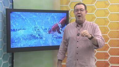 Confira o Globo Esporte AL desta quarta (02-10), na integra - Destaques do futebol alagoano