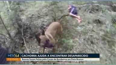 Cão farejador ajuda a encontrar homem desaparecido - O homem estava desaparecido há dois dias e foi encontrado em uma mata.