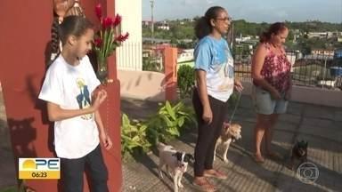 Dia de São Francisco tem bênção de animais no Grande Recife - Santo é conhecido como protetor dos animais e é celebrado nesta sexta-feira (4).
