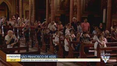 Fiéis celebram festa em homenagem a São Francisco de Assis - Dia do Padroeiro dos pobres e dos animais é celebrado nesta sexta-feira (4).
