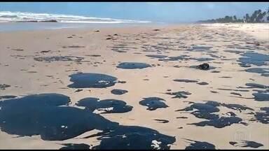 Praias sujas de óleo impedem a soltura dos filhotes de tartaruga em Aracaju - Ambientalistas suspenderam a soltura de filhotes de tartarugas no mar por causa das manchas de óleo no litoral nordestino.