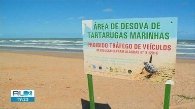 Piaçabuçu e Feliz Deserto são atingidos por manchas de óleo - Litora Sul foi atingido por manchas no fim de semana.