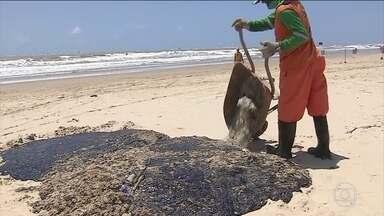 Óleo que atingiu praias do Nordeste não é brasileiro, diz Jair Bolsonaro - Presidente disse que já tem um país suspeito, mas não quis dizer qual. Já o ministro do Meio Ambiente disse que já foram recolhidas toneladas de óleo da costa.