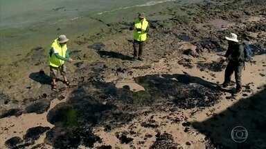 Litoral do Nordeste tem 138 áreas atingidas por petróleo derramado - O governo investiga as causas e a responsabilidade sobre o derramamento de óleo. A área atingida mais recente é a praia do Forte, na Bahia.