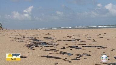 Manchas de óleo: prefeituras de três cidades recolhem 765 litros das praias - Um inquérito foi aberto pela PF e as investigações ainda não estão concluídas
