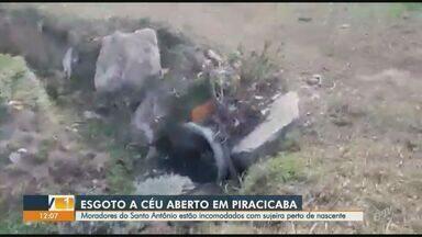 'Até Quando?': imagens mostram esgoto sendo despejado em nascente em Piracicaba - Segundo denúncia de morador, esgoto é coletado nas casas e despejado em nascente no bairro Santo Antônio.
