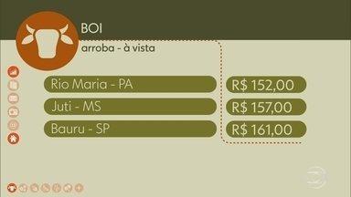 Veja os preços do boi gordo. - Veja os preços do boi gordo.